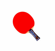 Table Tennis Page link